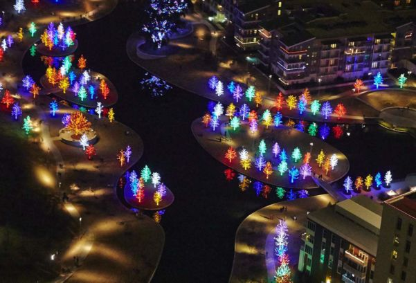 Holiday light tours in Dallas Ft Worth